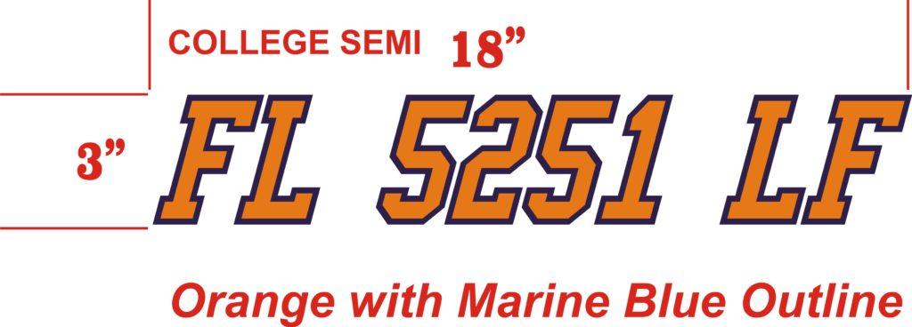 Registratin Number Design
